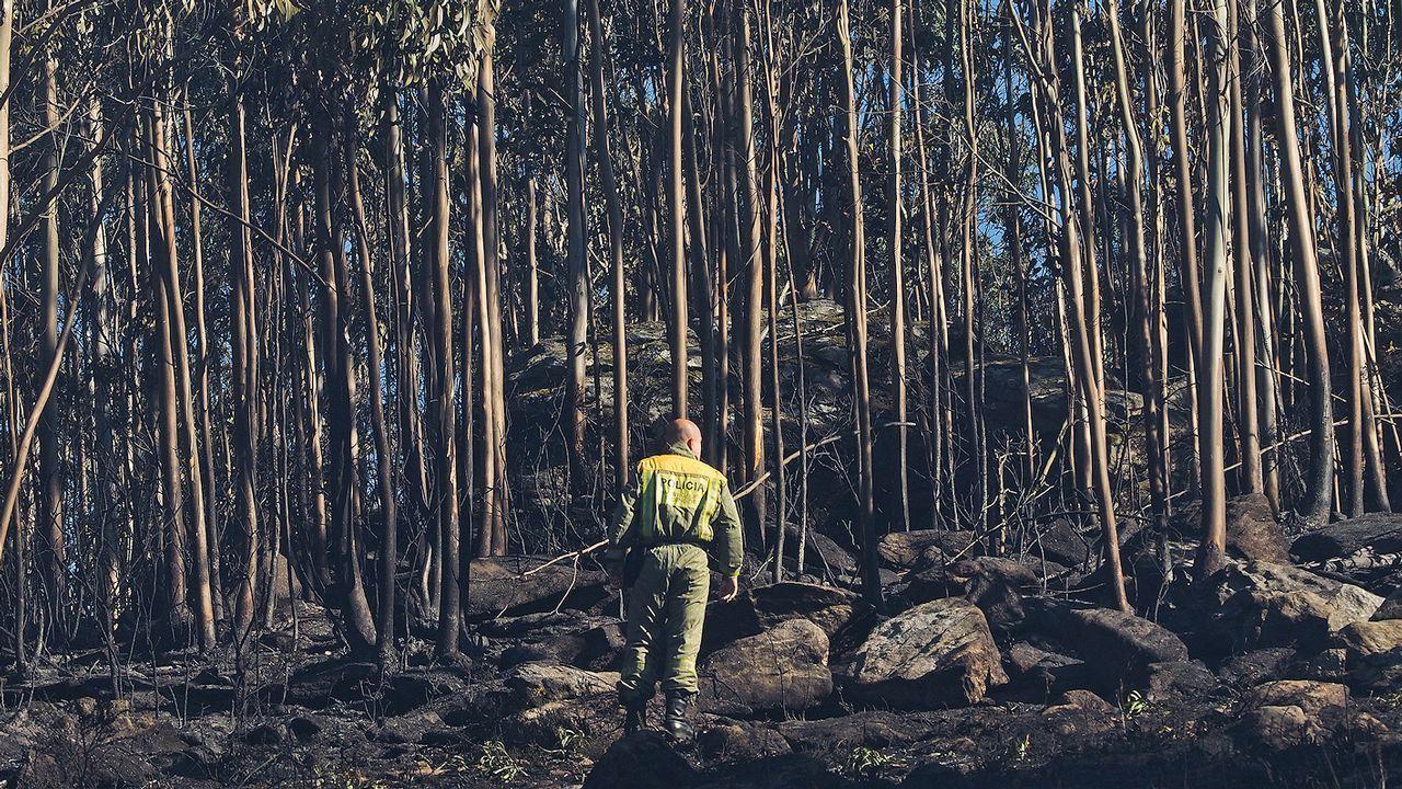 Lucha contra el fuego en Rianxo.Zona de Bexo, en Dodro, donde se inició el devastador fuego que rápidamente saltó a Rianxo