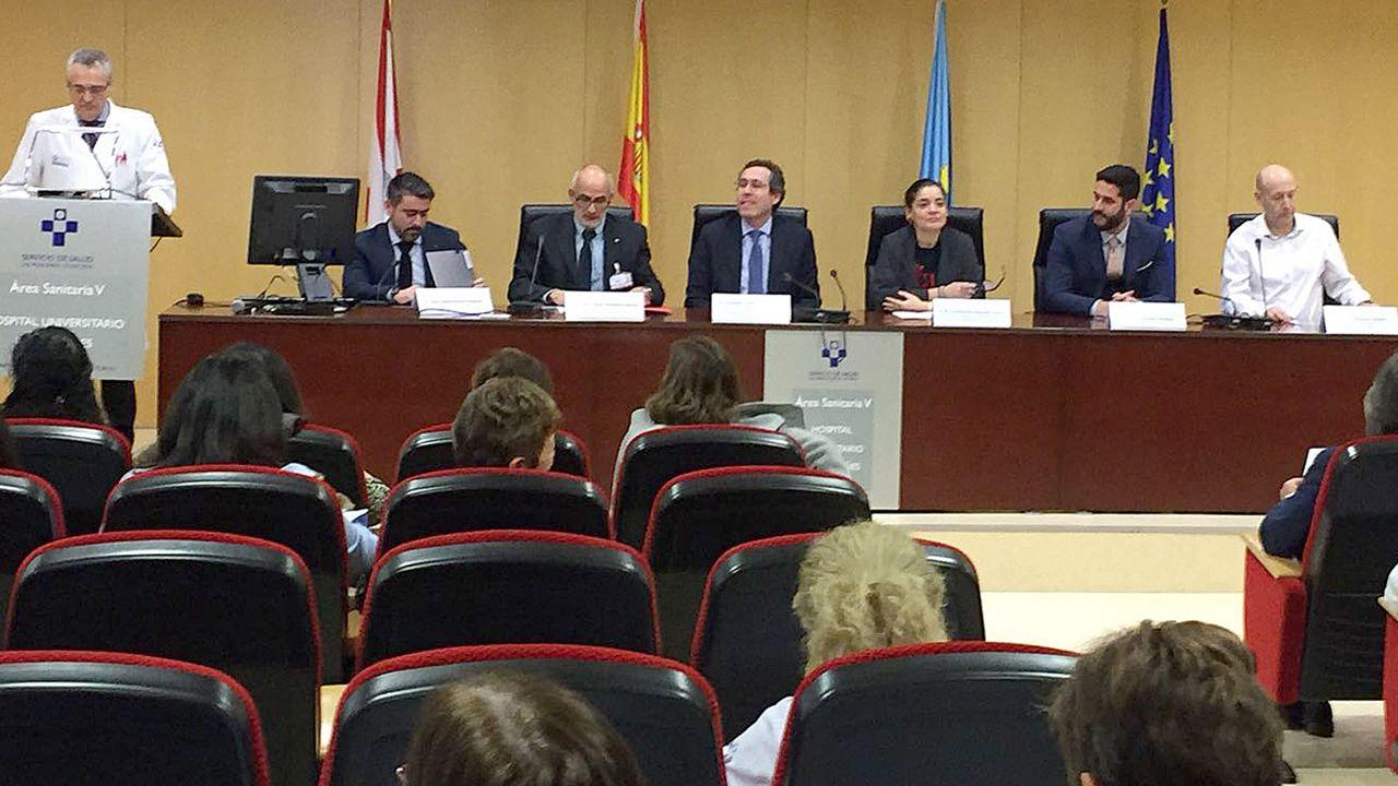 Entrega de los premios de Investigación del Área Sanitaria V (Gijón).Entrega de los premios de Investigación del Área Sanitaria V (Gijón)