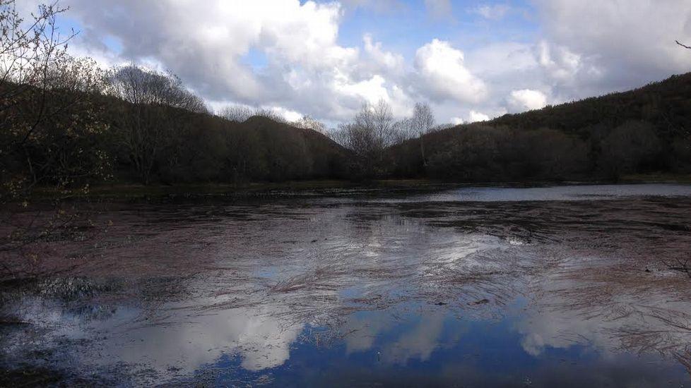 Aspecto actual de la laguna de Lucenza, en una imagen tomada a finales de la semana pasada