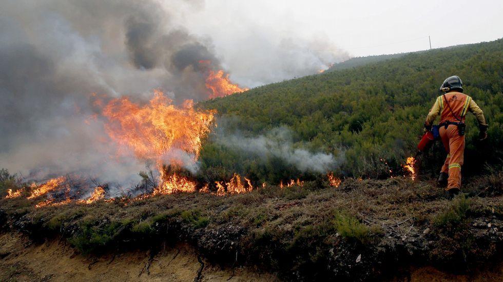 La noche se abre en cien fuegos.Incendios en Asturias