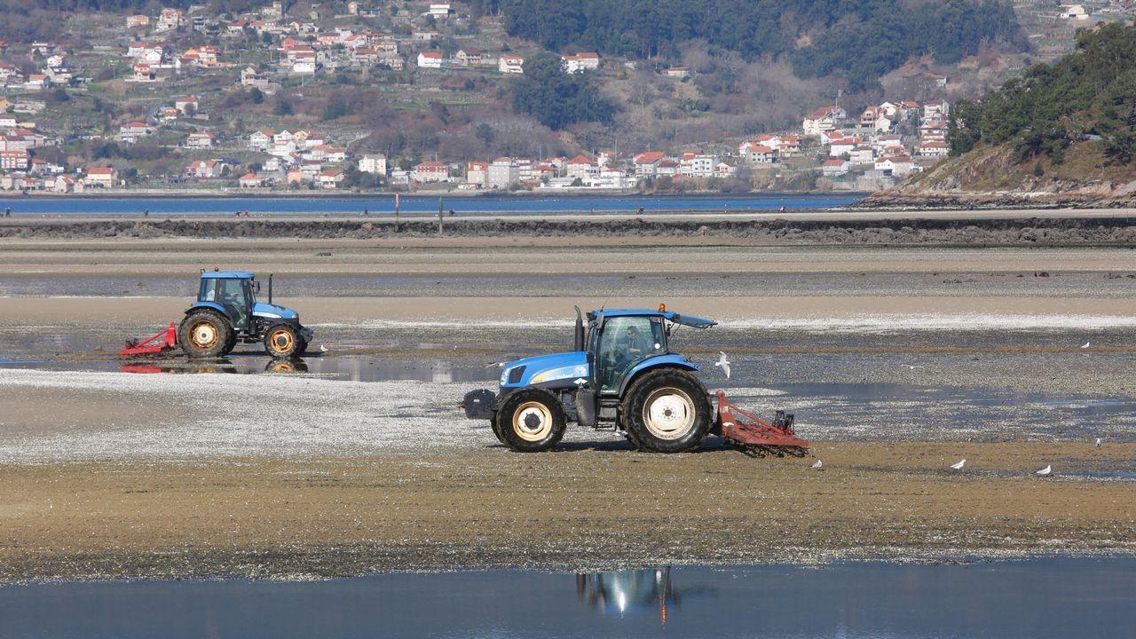 Los tractores toman las playas.