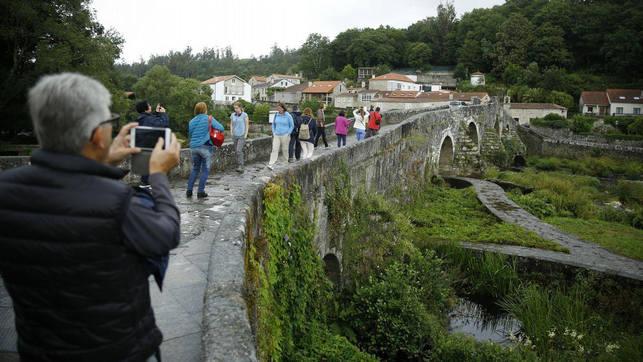 Cabra galega: bella, sabrosa y todoterreno