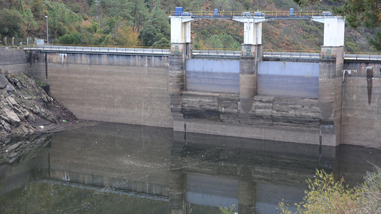 Desde el centro de Ximonde, en Vedra, se ocupan de hacer todas las repoblaciones del Ulla y sus afluentes