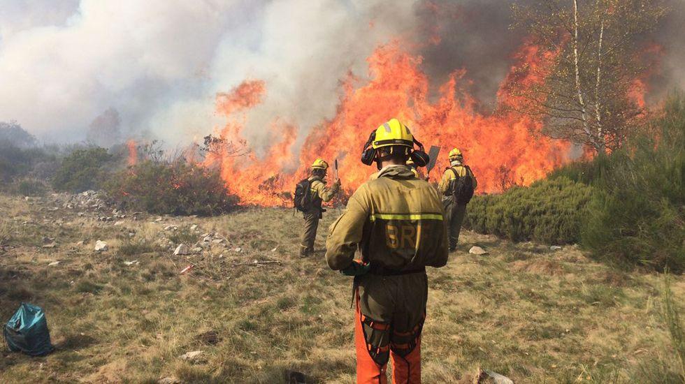 Personal de la BRIF de Tineo lucha contra las llamas en el incendio de Degaña y hace un cortafuegos.Personal de la BRIF de Tineo lucha contra las llamas en el incendio de Degaña y hace un cortafuegos