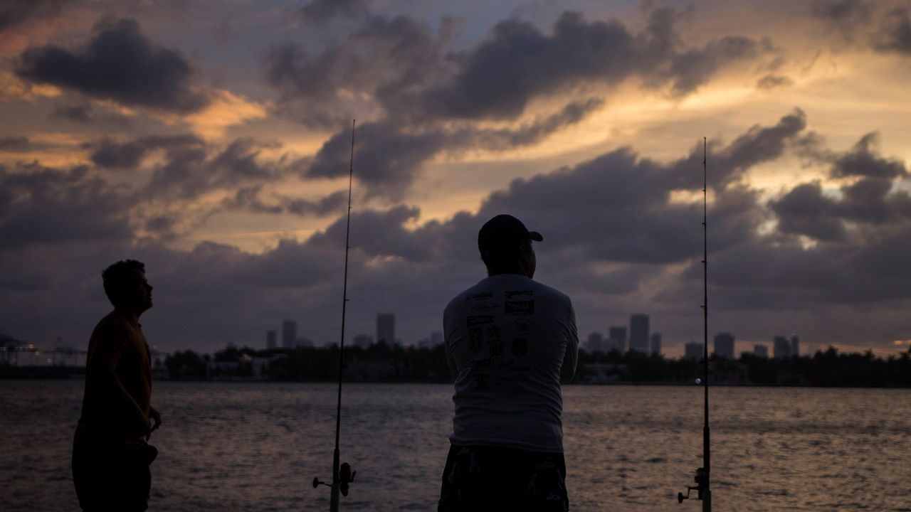 Varios ciudadanos de Miami observan la silueta de la ciudad de Miami.