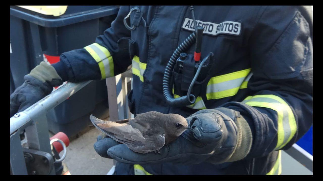 La Guardia Civil refuerza la lucha contra los incendios forestales