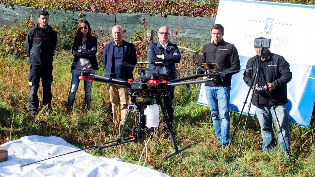 El dron vuela contra la velutina.