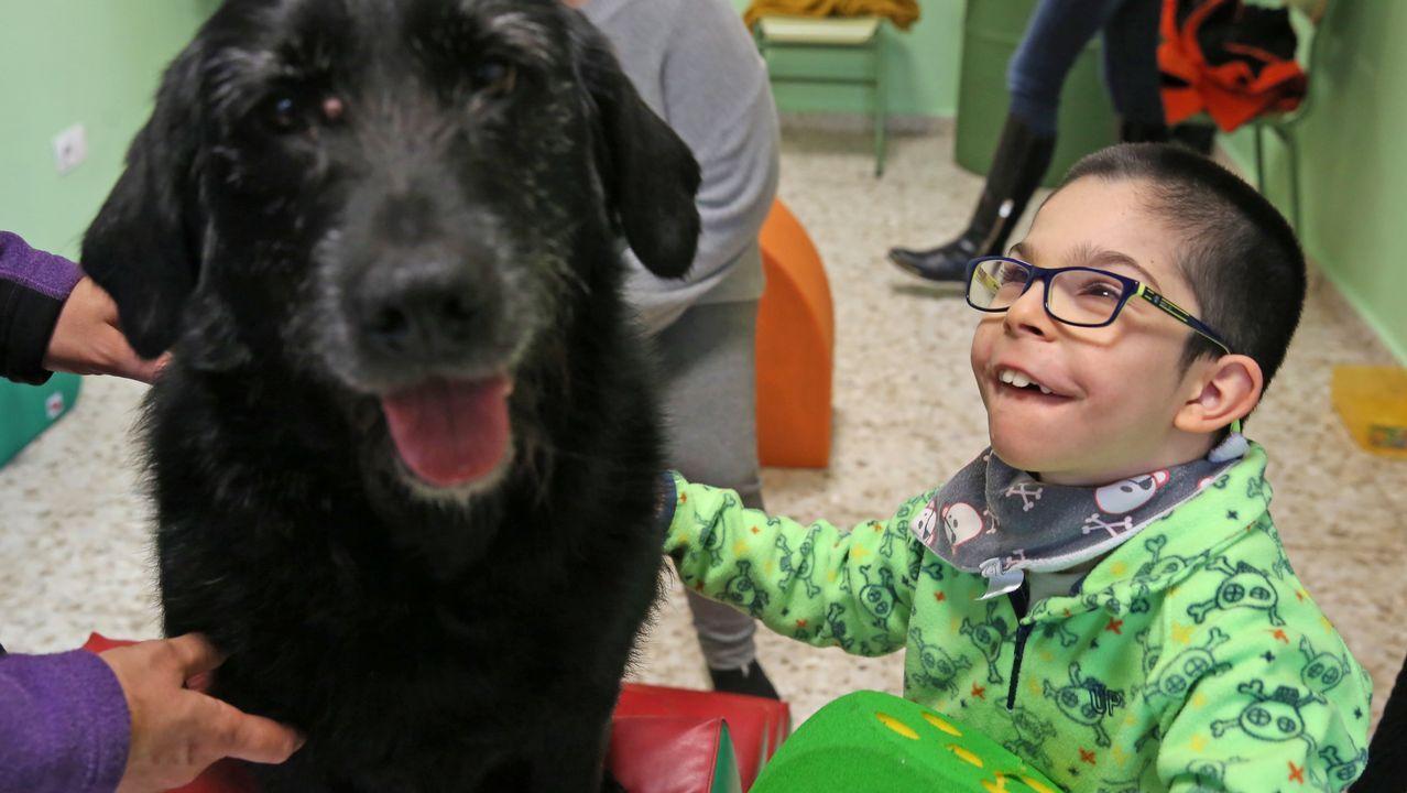 El CEE Miño y la asociación Ardai desarrollan una terapia psicosocial con animales