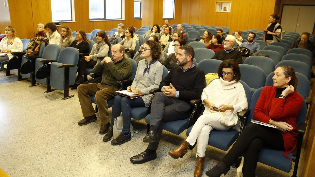 Médicos del Sergas llevan su protesta por la falta de personal a las puertas del Parlamento gallego