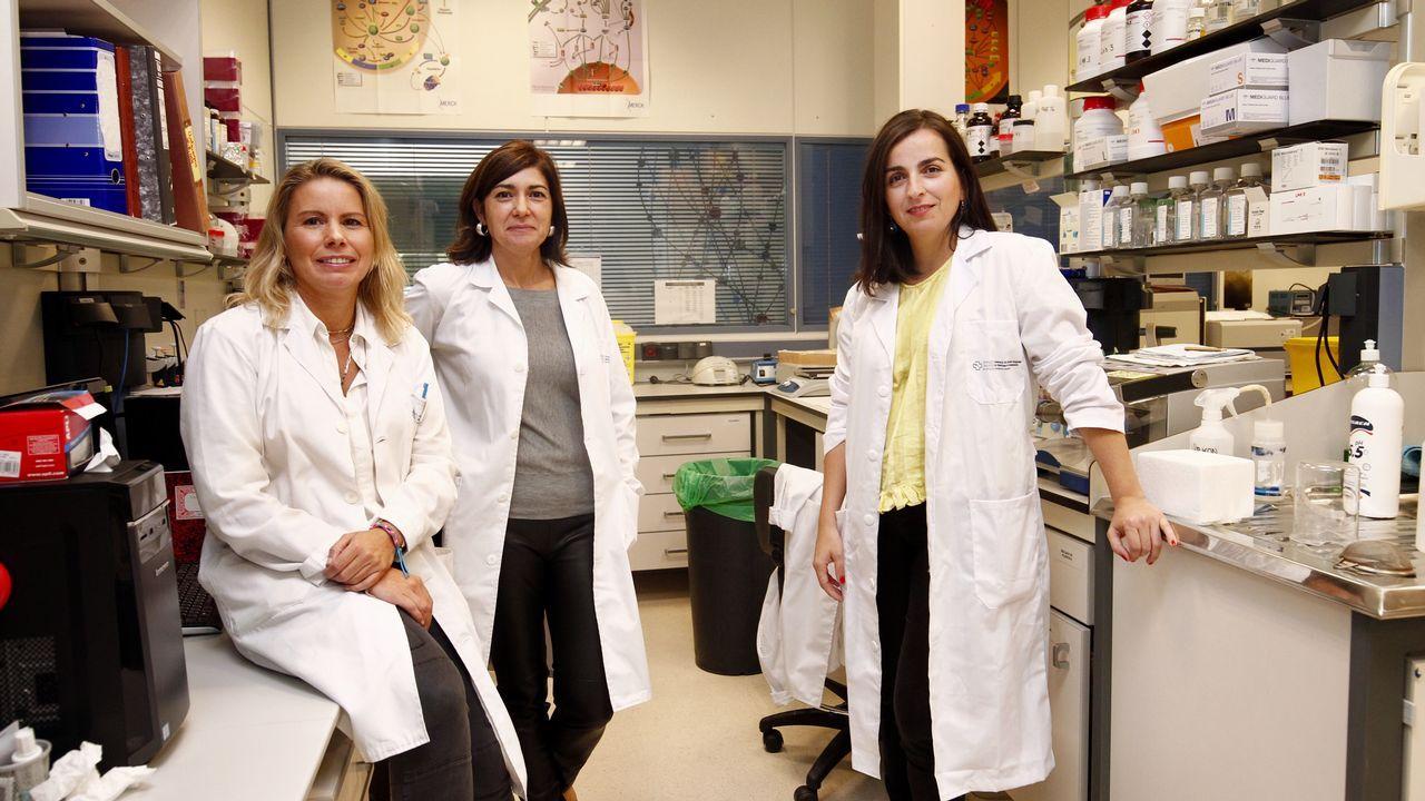 Dos embarazos penalizan la carrera de una investigadora de Santiago