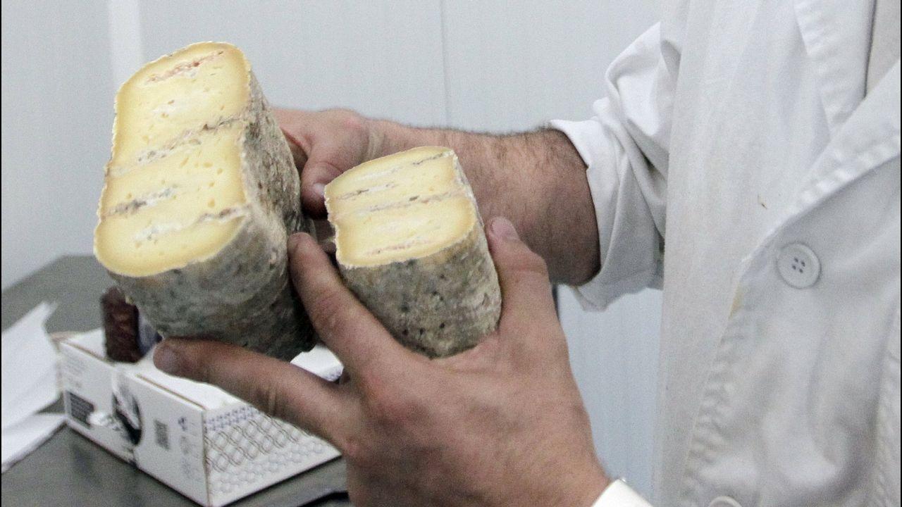 El queso gallego es uno de los productos que despierta interés en China
