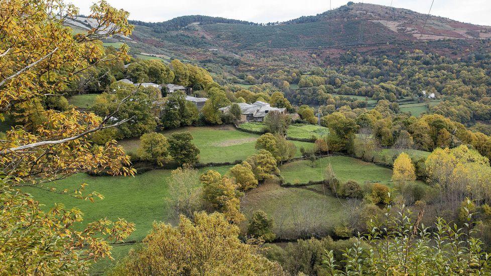 Prados y árboles en la aldea de Miraz do Courel