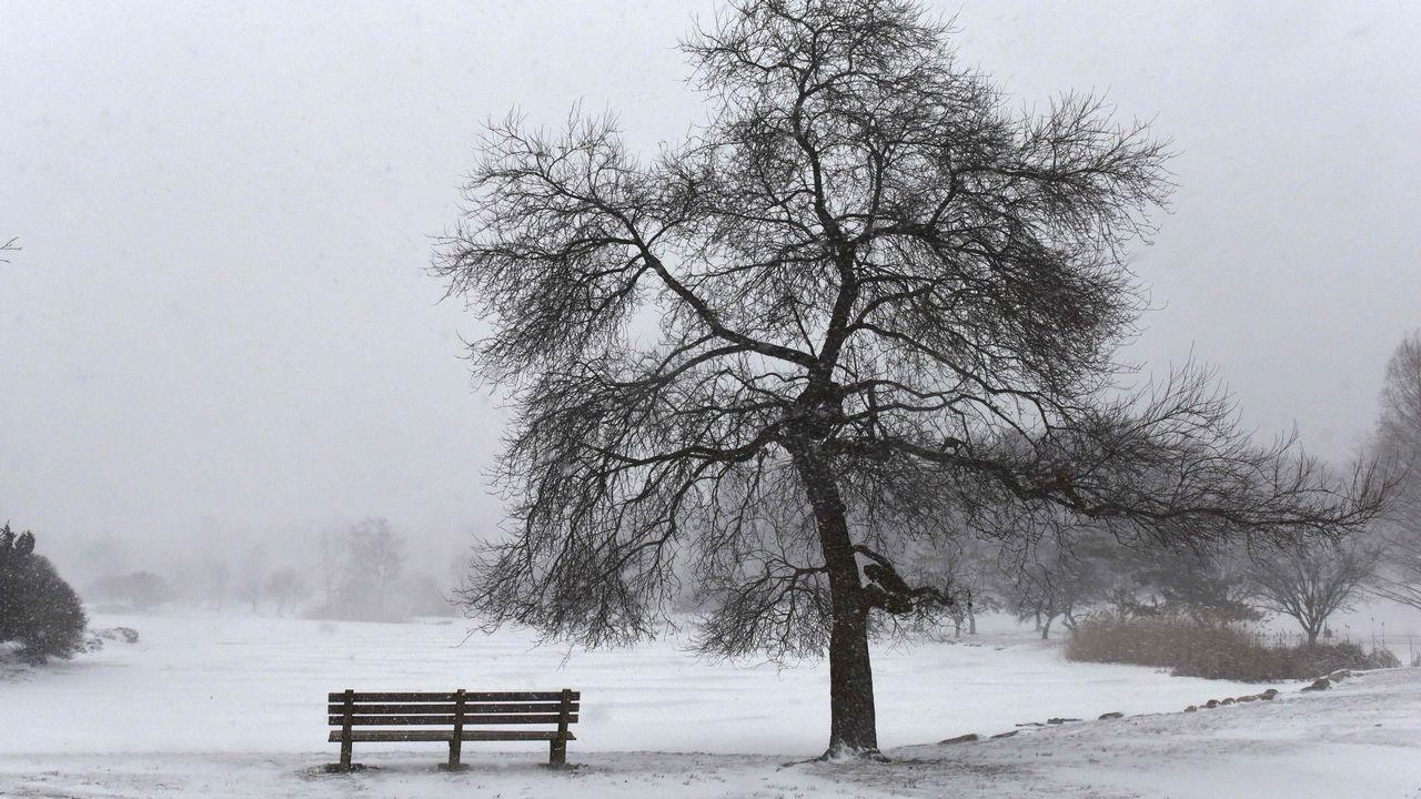 La nieve cubre el parque Bruce en Greenwich, Connecticut