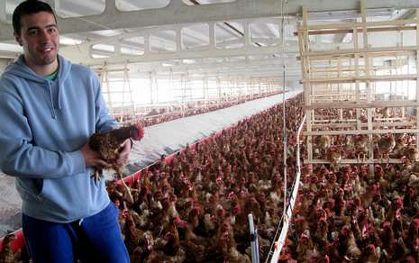 Con apoyo del GDR, un joven de Melide puso en marcha una explotación avícola de huevos camperos.