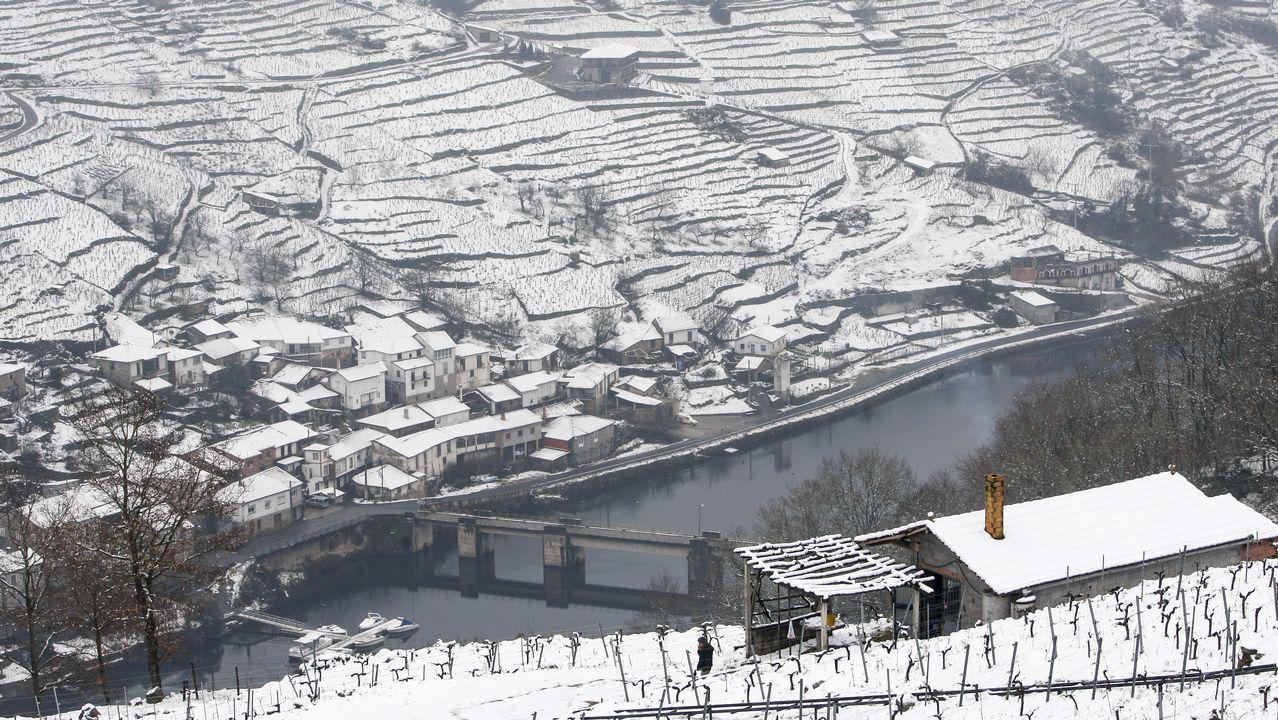 Bancales cubiertos de nieve en las ribeiras de A Ermida -en Chantada, a la derecha- y Belesar, en O Saviñao