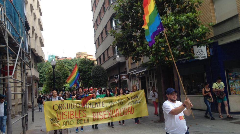 Manifestación Orgullo LGTB Gijón.Los ocho diputados asturianos