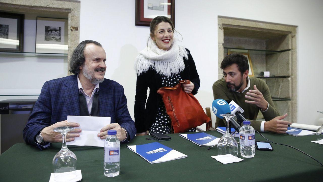 El 18 de enero, los diputados de En Marea Miguel Anxo Fernán-Vello, Yolanda Diaz y Antón Gómez Reino criticaron los Presupuestos y dijeron que votarían en contra. Al final los apoyaron