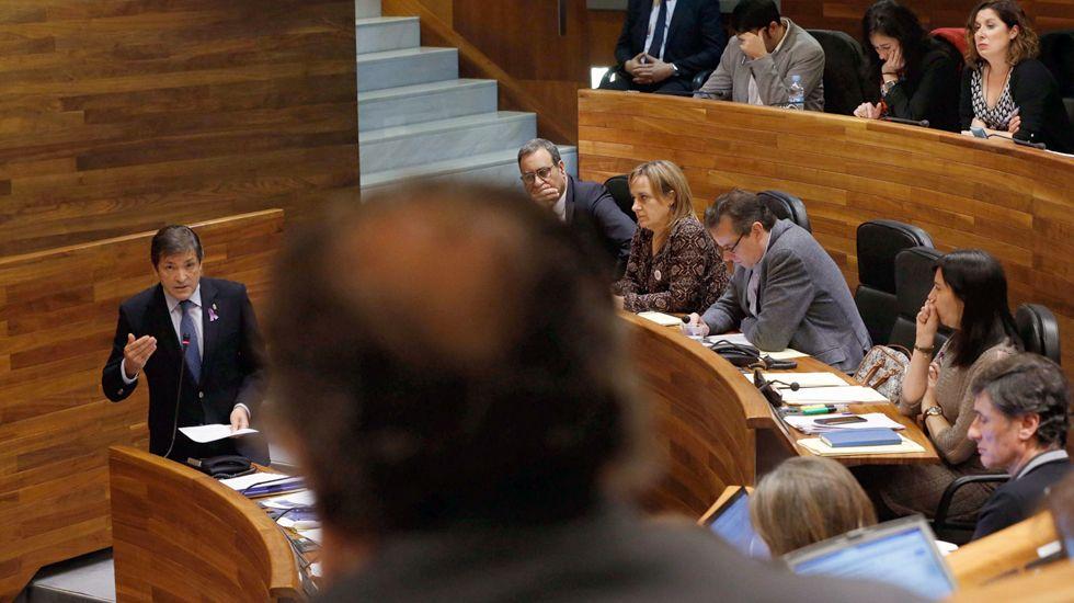 El presidente del Principado, Javier Fernández, interviene desde su escaño en el pleno de la Junta General.El presidente del Principado, Javier Fernández, interviene desde su escaño en el pleno de la Junta General