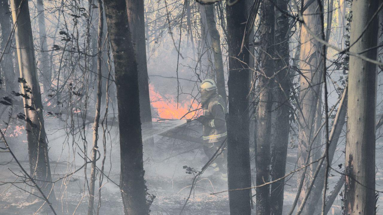 Incendio en Louriño