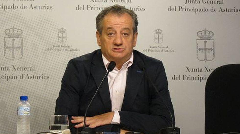 La diputada del PP en la Junta General, Carmen Pérez García.Nicanor García