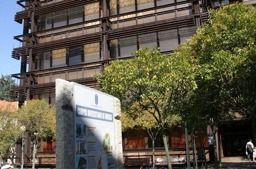 Ourense saca sus armas contra el cambio climático en Galiciencia.Científicos investigando la presencia de la velutina en una colmena