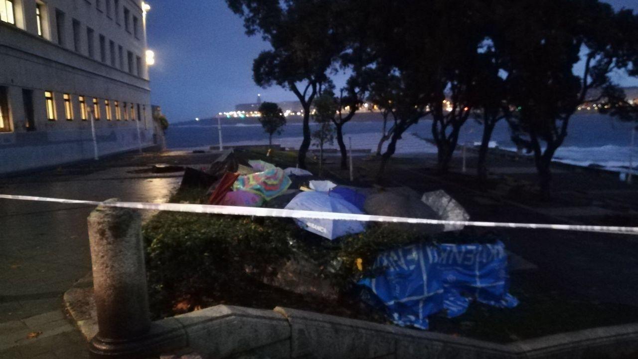 En A Coruña se cuentan varios árboles caídos como este, delante del colegio Salesianos