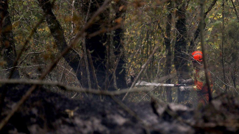 Un bombero participa en las labores de extinción del incendio declarado en la Reserva de la Biosfera de Muniellos (Asturias), considerado como el robledal mayor y mejor conservado de España
