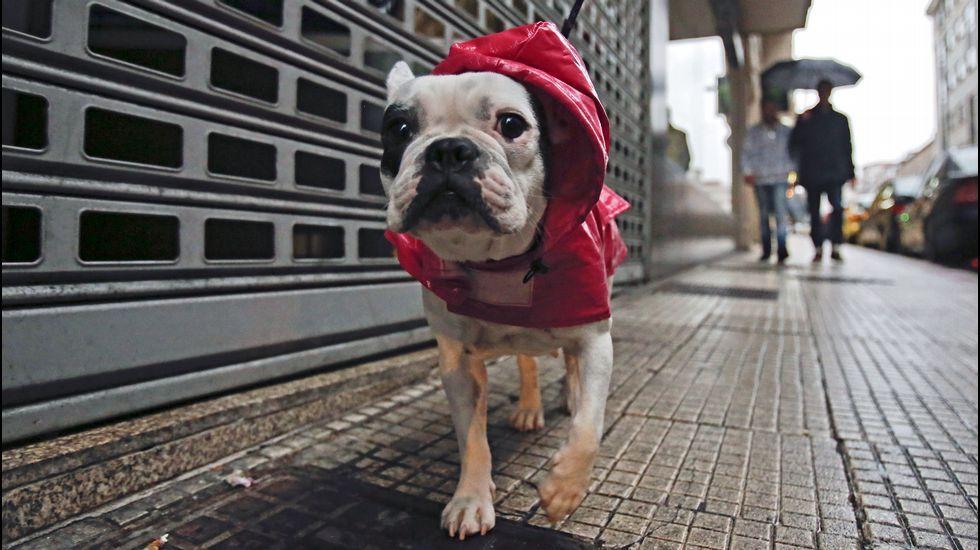 Veintidós flexiones por España.Las lluvias llegan, por fín, a Pontevedra.
