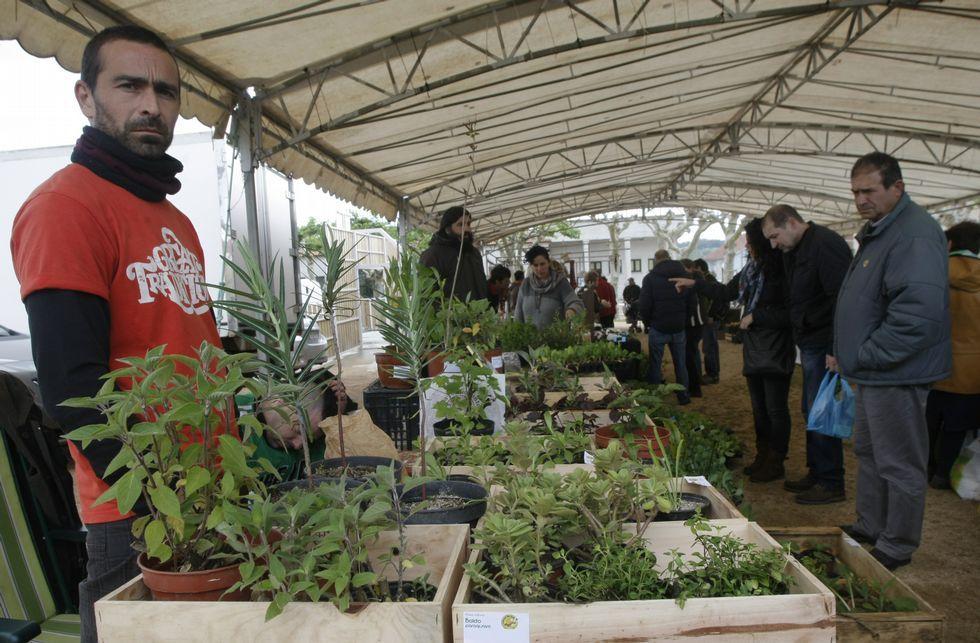 Meis acogió ayer una feria de intercambio de semillas y de productos ecológicos.