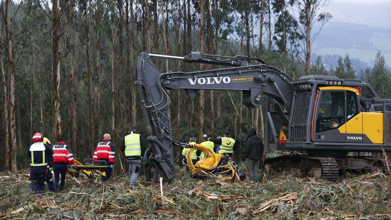 Imagen de archivo de un accidente en el sector forestal, uno de los que presentan una elevada siniestralidad laboral