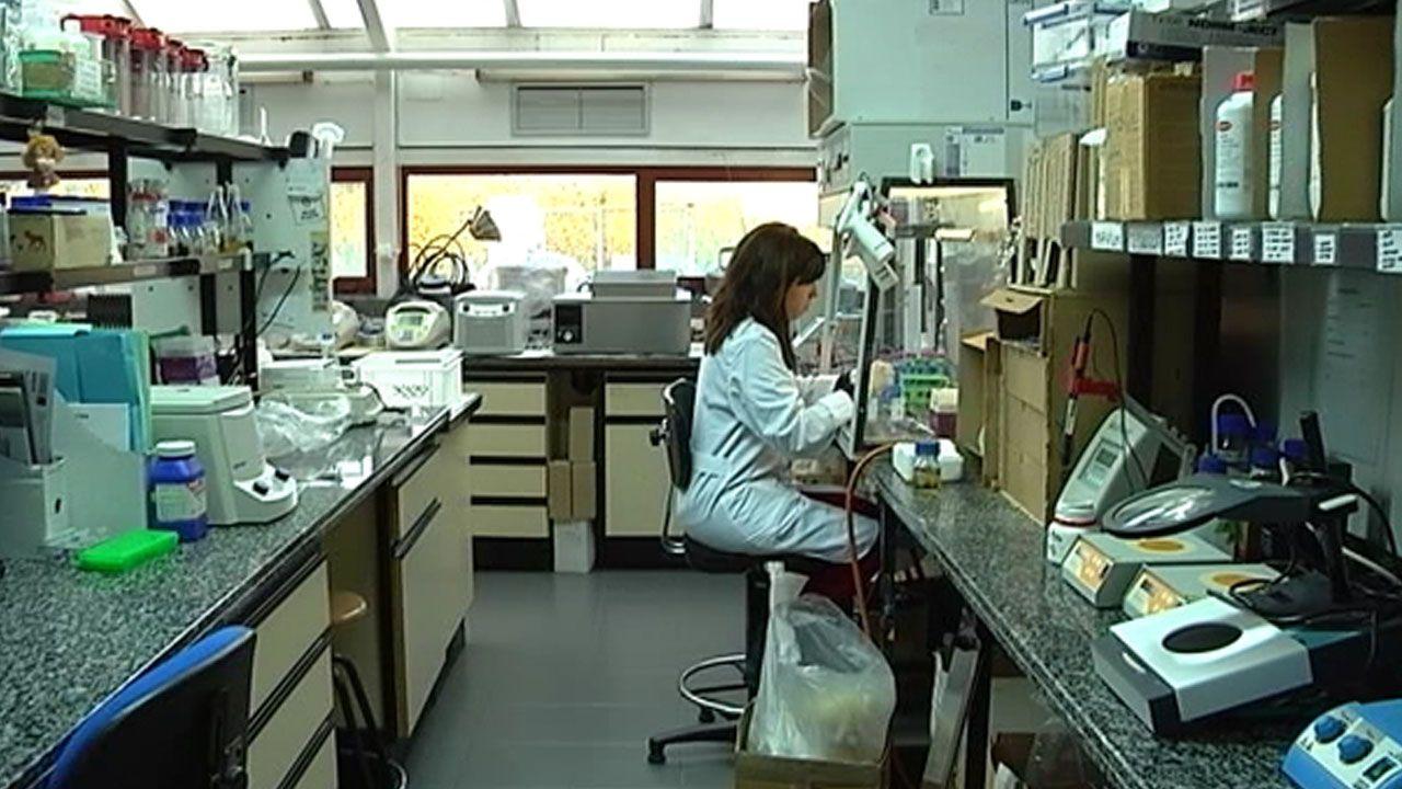 Supermaterial CSIC.Un laboratorio del IPLA