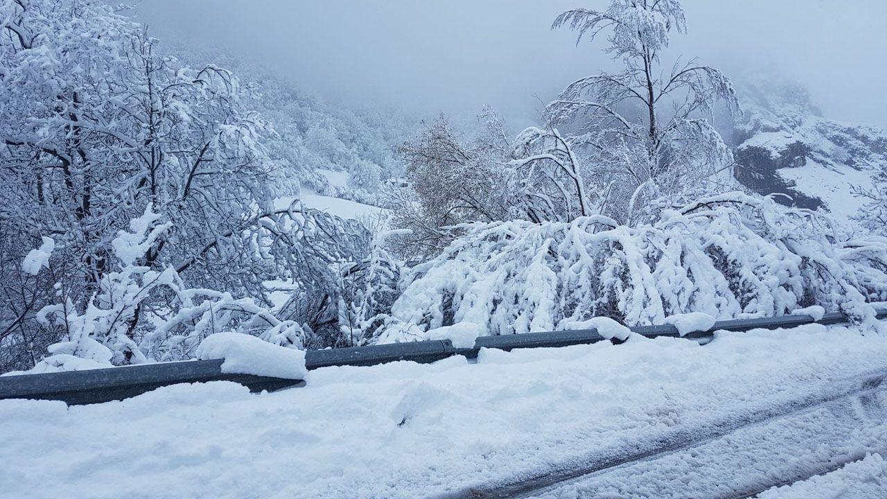 La nieve dificulta el tráfico en la autopista del Huerna.Carretera nevada en San Isidro