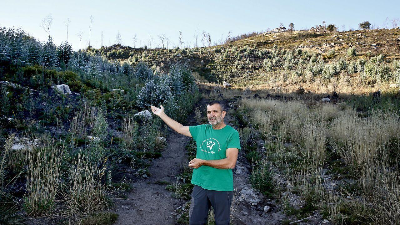 Maderas Vidal sobrevive gracias a la generosidad de otras madereras