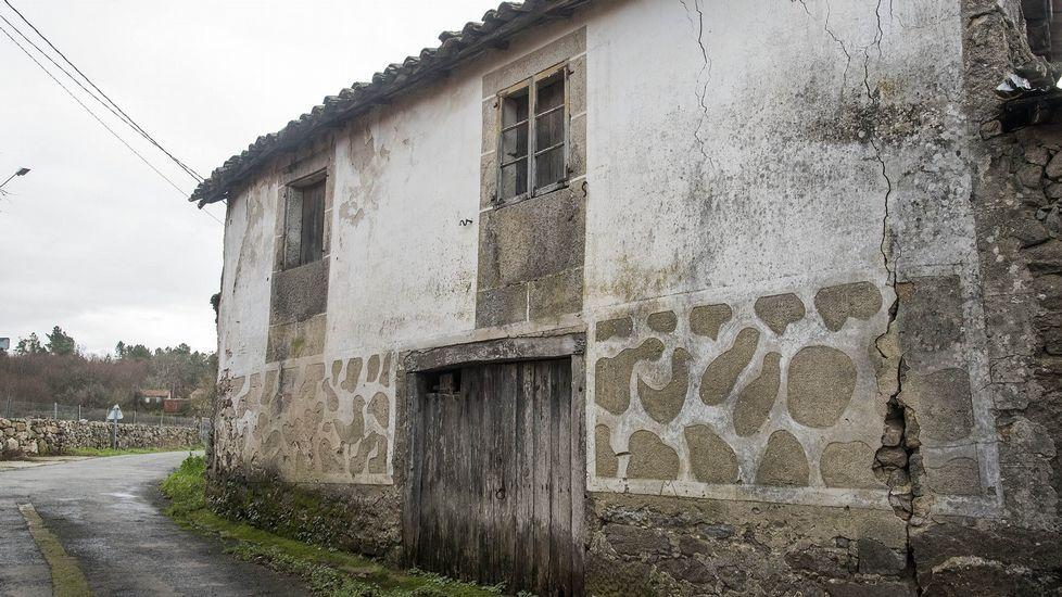 El legendario Carballo de Ramos y otros robles monumentales lucenses