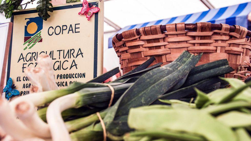 Productos de agricultura ecológica con el sello del Copae.Productos de agricultura ecológica con el sello del Copae