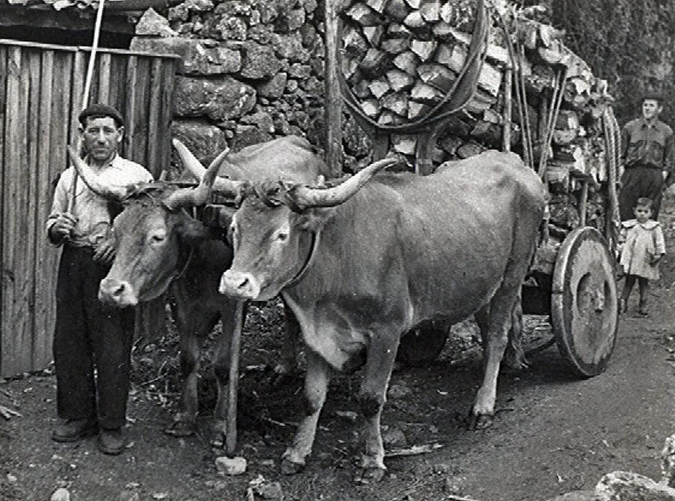 Choque frontal en la N-640.José María dos Piñeiros nos anos 50 do pasado século.