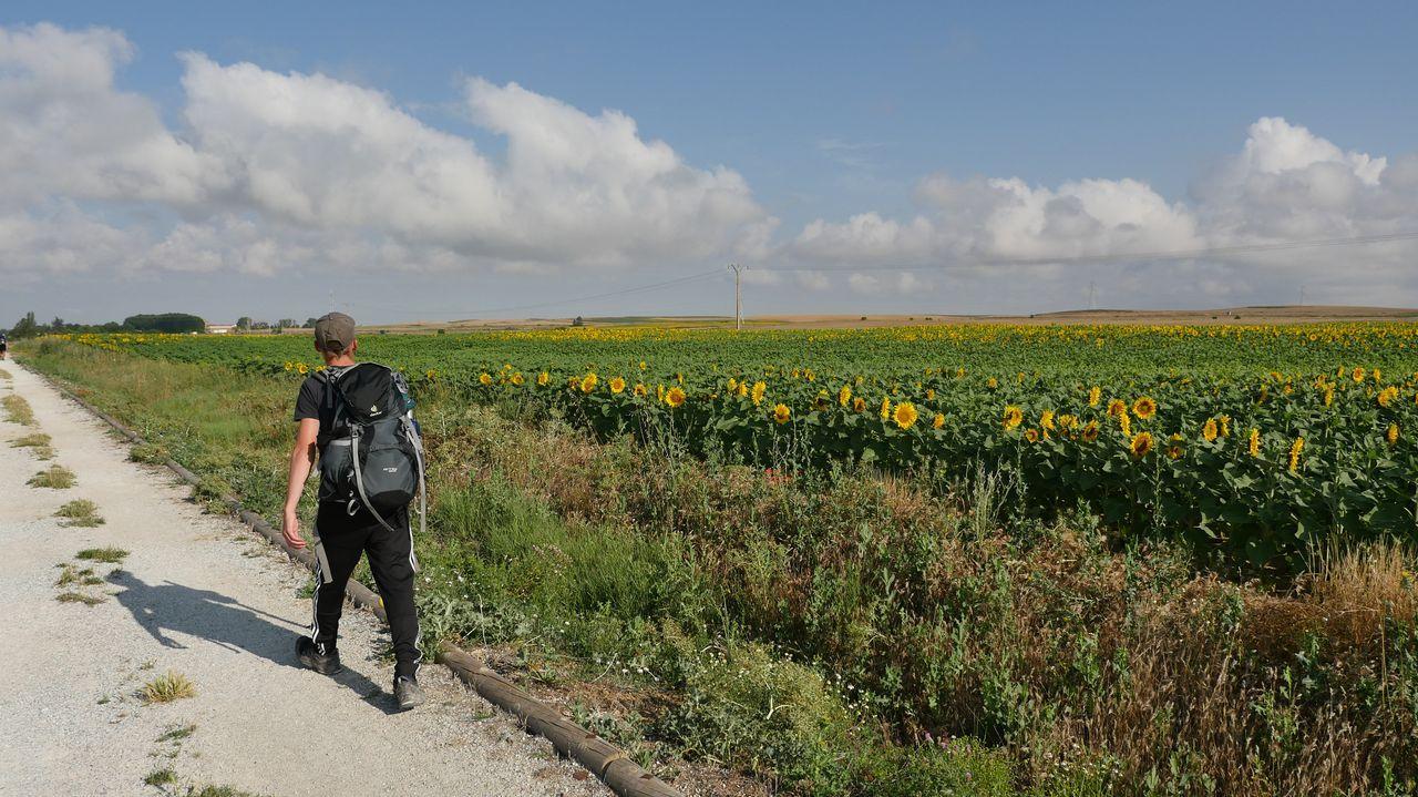 Ancha es la Castilla peregrina.Eloína y Nuria se han conocido en el Camino