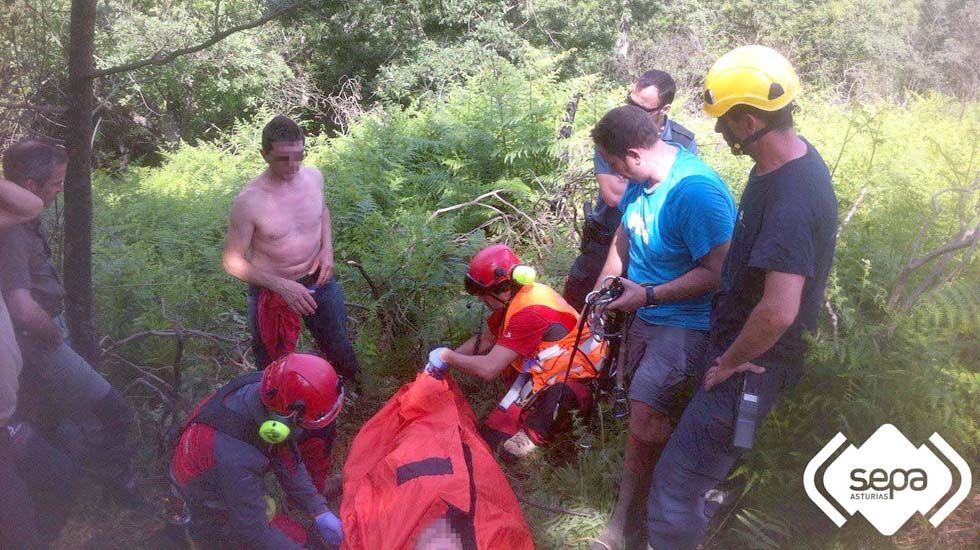 Rescate del guarda atacado por un jabalí en Cangas de Onís.Dos lobos en el cercado de Belmonte