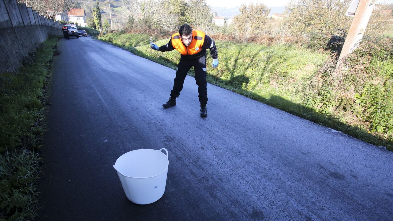 Un camión cargado de túnidos pierde parte de su carga en Carril.Cursos de formación a miembros de Protección Civil en Gijón
