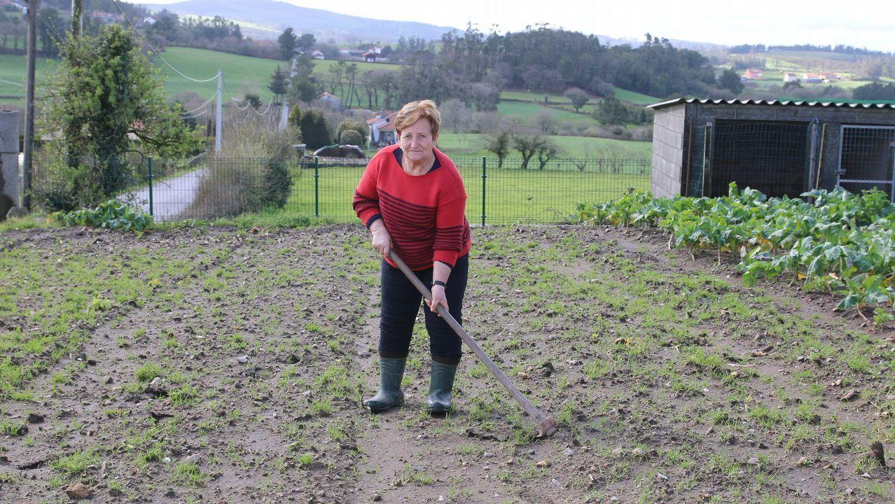 Lema sigue con su trabajo de veterinario de la Xunta, que ya tenía cuando era alcalde