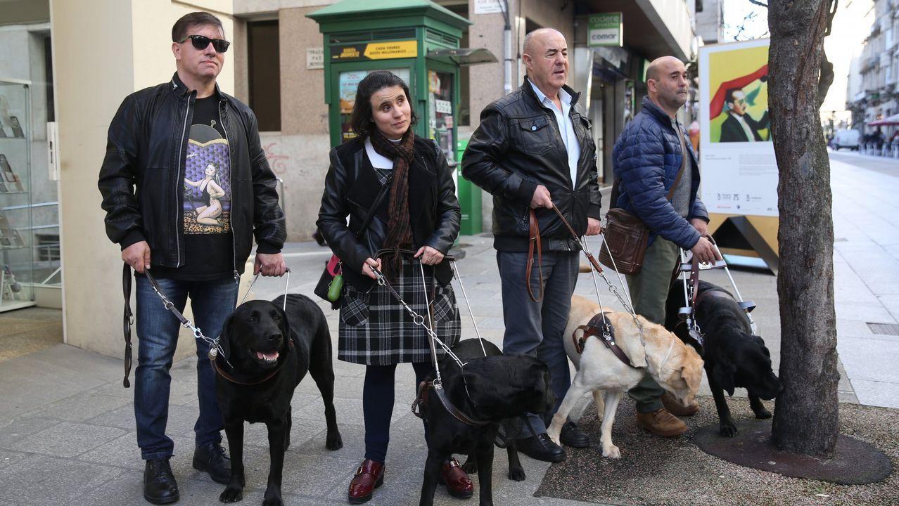 Los perros guía de la ONCE en Ourense