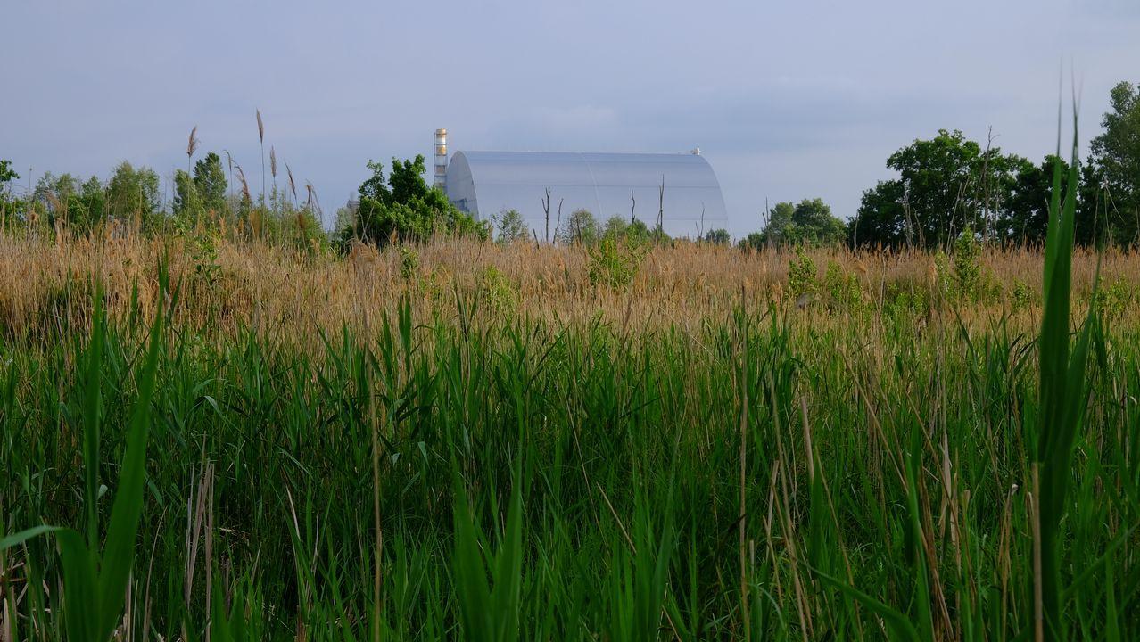 Un arriesgado «influencer» del motor.Azbuchyn lake, Zona de Exclusión de Chernobyl. Zona de charcas a sólo un kilómetro de la central nuclear, que se ve al fondo. Mayo de 2019. Autor: Germán Orizaola