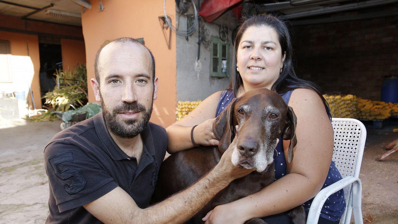 De trabajar en Angrois y buscar a Marta del Castillo a jubilarse en Pontevedra.Tren de Renfe