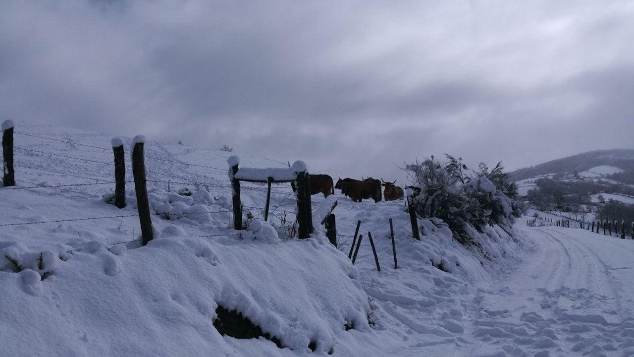 Los monten Asturianos amanecen blancos