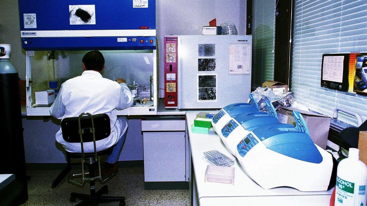 .La facultad de Veterinaria, en 1998
