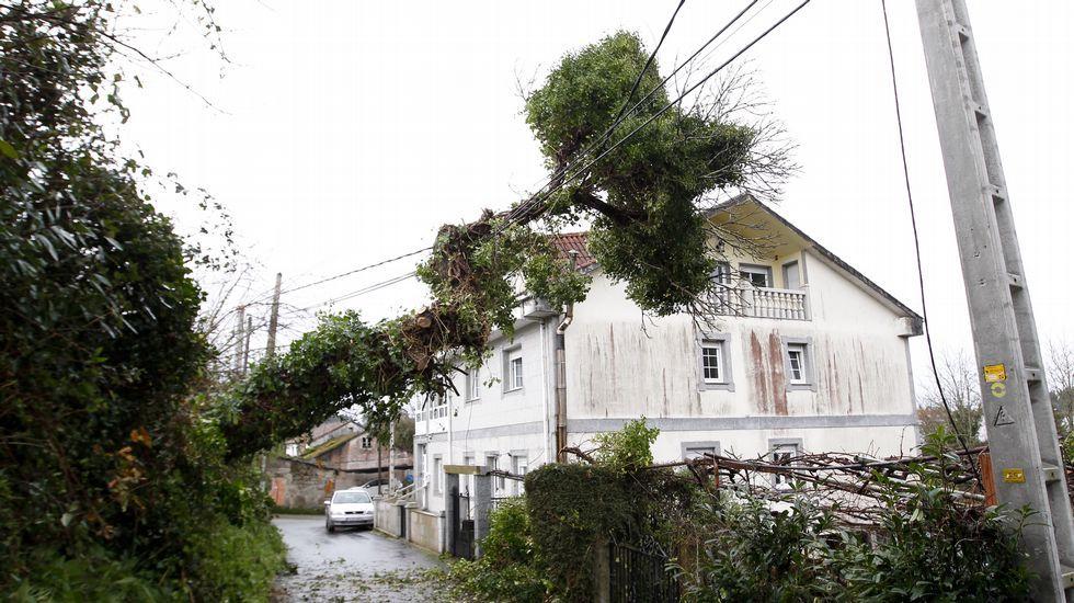 Los efectos del temporal en la Alameda de Santiago.Tendido eléctrico afectado en Chouchiños (Santiago)