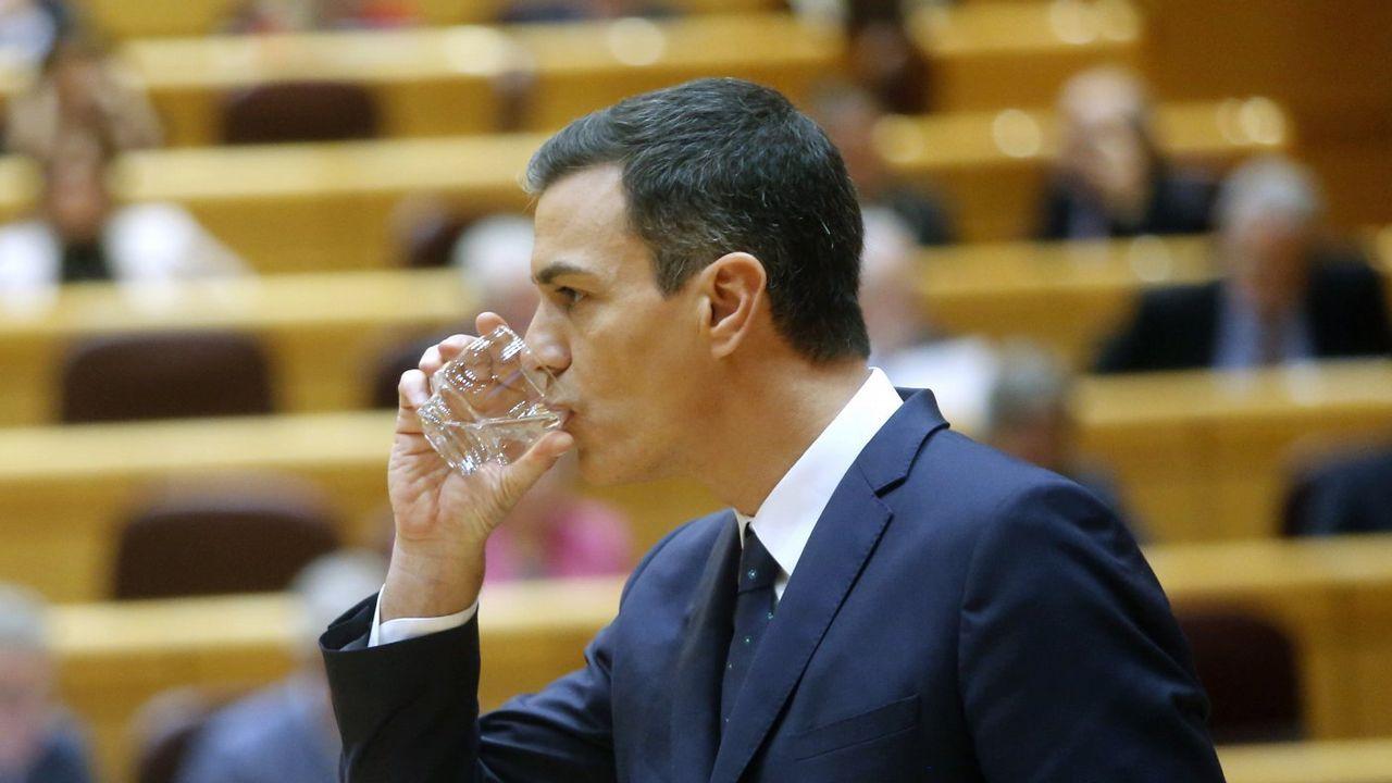 Sánchez arranca desde la Moncloa la campaña para las elecciones del 28 de abril.El Gobierno de Pedro Sánchez, en una imagen del pasado octubre