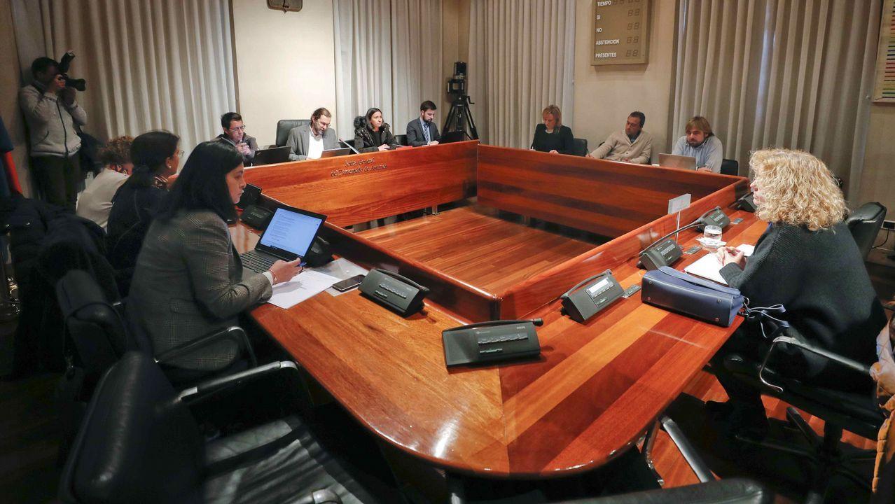 La directora territorial del Instituto de Formación y Estudios Sociales (IFES) entre 1987 y 2013, Ana Rosa Gomis (1d), en la Junta General