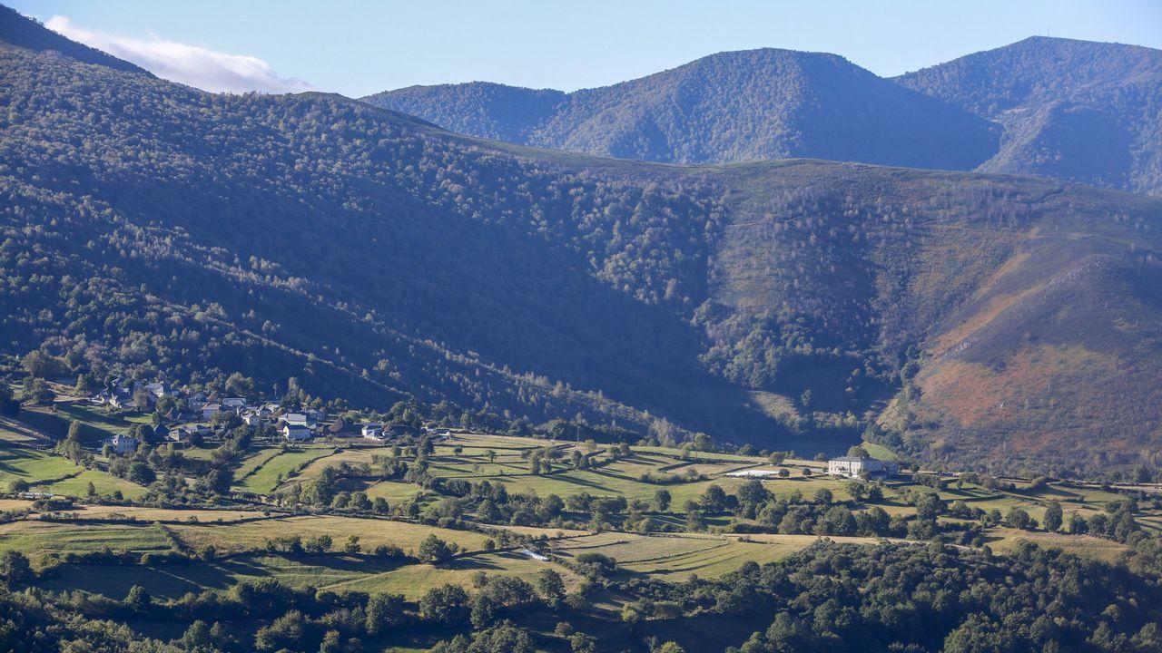 Galicia en alerta por la borrasca Helena.Un vecino de Vimianzo talando un árbol