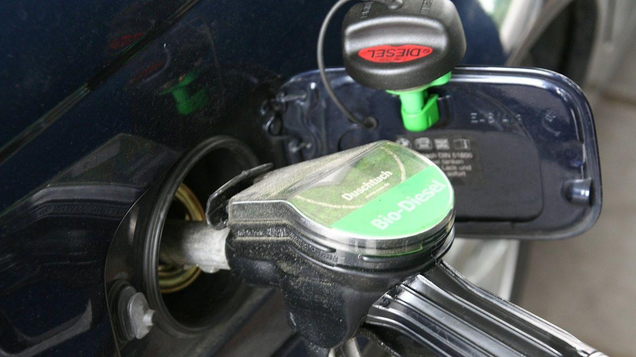 El aceite de palma, también en el depósito de tu coche